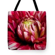 Dahlia Named Friquolet Tote Bag