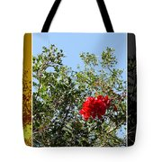 Daily Cycle - Triptych Tote Bag