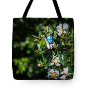 Daintree Monarch Butterfly Tote Bag