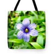Dainty Blue Tote Bag