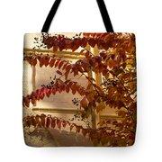 Dainty Branches - Warm Autumn Colors - Washington D C Facades Tote Bag