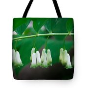 Dainty White Flowers Central Park Tote Bag