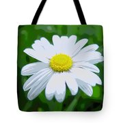 Daisey Flower - Looks Like A Painting Tote Bag