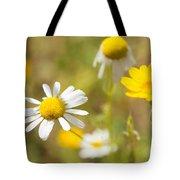 Daisies On Summer Meadow Tote Bag