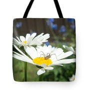 Daisies With Phalangiid Vistitor Tote Bag