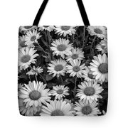 Daisy Cluster Vermont Flowers In Black And White Tote Bag