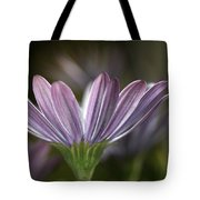 Daisy Delight Tote Bag