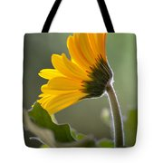 Daisy Derriere Tote Bag