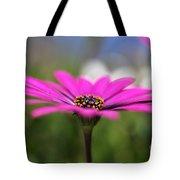 Daisy Dream Tote Bag
