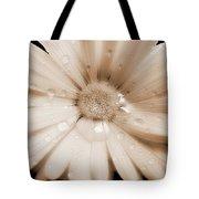 Daisy Dream Raindrops Sepia Tote Bag