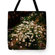 Daisy - Give Me Your Answer Do Tote Bag