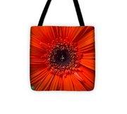 Daisy In Full Bloom Tote Bag