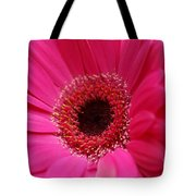 Daisy Pink Tote Bag