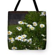 Daisy Splendor Tote Bag