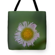 Daisy Weed Series Photo A Tote Bag