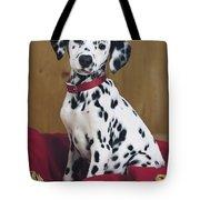 Dalmatian In Basket A108 Tote Bag