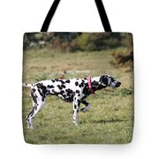 Dalmation Pretending To Be A Pointer Tote Bag
