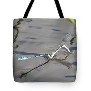 Damselflies Mating II Tote Bag