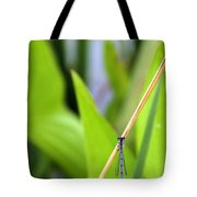 Damselfly Female Tote Bag