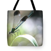 Damselfly On Little River  Tote Bag