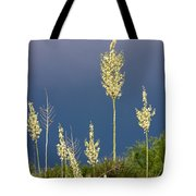 Dance Of The Yucca Tote Bag