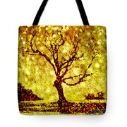 Dances With Stars 2 Tote Bag