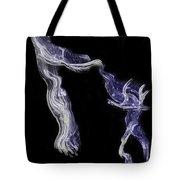 Dancin' Fools Tote Bag