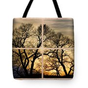 Dancing Forest Trees Picture Window Frame Photo Art View Tote Bag