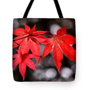 Dancing Japanese Maple Tote Bag by Rona Black