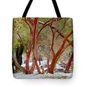Dancing Manzanitas On The Hillside In Park Sierra-california Tote Bag