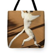 Dancing Sifaka 2 Tote Bag