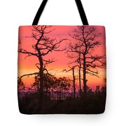 Dancing Trees Into The Fire Tote Bag