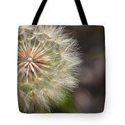 Dandelion Art - So It Begins - By Sharon Cummings Tote Bag