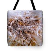 Dandelion Closeup Tote Bag