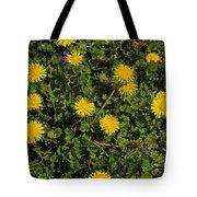 Dandelion Convention Tote Bag