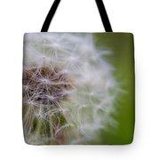 ...dandelion Tote Bag