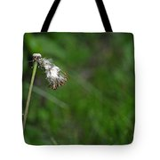 Dandelion In The Wind Tote Bag
