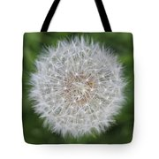 Dandelion Marco Abstract Tote Bag