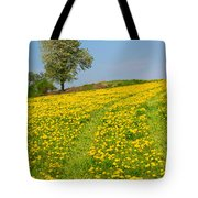 Dandelion Meadow And Alone Tree  Tote Bag