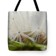 Dandelion Seed Head Macro IIi Tote Bag