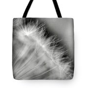 Dandelion Seeds - Black And White Tote Bag