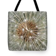 Dandelion Square Tote Bag