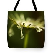 Dandelion Stub With Drop Tote Bag