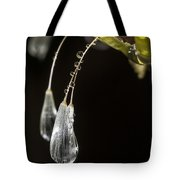 Dandelion Tears Tote Bag