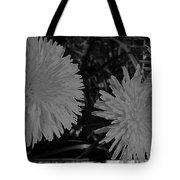 Dandelion Weeds? B/w Tote Bag