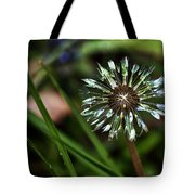 Dandelion Will Make You Wise Tote Bag