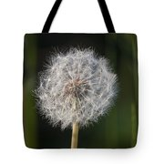 Dandelion With Abstract Grasses Tote Bag