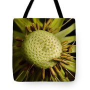 Dandelion With Seeds Tote Bag