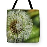 Dandelion With Water Drops Tote Bag