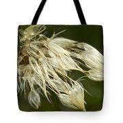 Dandelion's After Rain Tote Bag